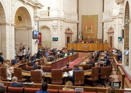 """Aguirre destaca los planes en Primaria para mejorar la respuesta y PSOE-A pide soluciones """"para evitar muertes"""""""