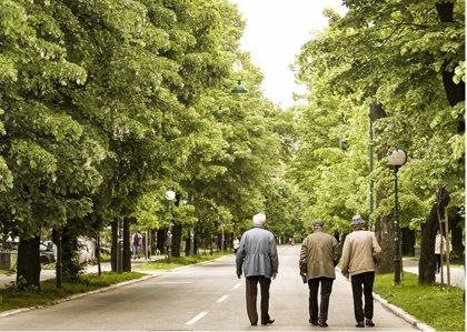 Extremadura registra 228.907 pensiones en septiembre, un 0,11% más que hace un año, con una cuantía media de 844,8 euros