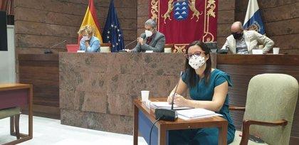 El Gobierno de Canarias inyecta este año 11,2 millones al turismo para incentivar la demanda