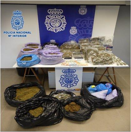 Detenidos los administradores de una asociación cannábica de Eibar e incautados 34 kilos de marihuana