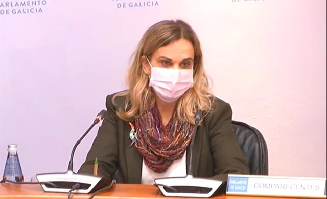 La valedora do Pobo, María Dolores Fernández Galiño, presenta en comisión la memoria de la institución de 2019