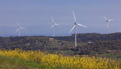 Los proyectos de energía eólica supondrán 237 millones para los municipios catalanes