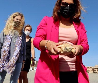 La consejera de Desarrollo Sostenible suelta dos tortugas boba recuperadas en el CEGMA del Estrecho