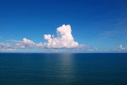 Las olas de calor marinas, 20 veces más frecuentes por el efecto humano