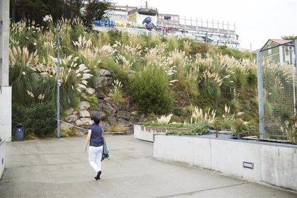 Santander guardará un minuto de silencio por la joven cuyos restos se hallaron en la Peña del Cuervo