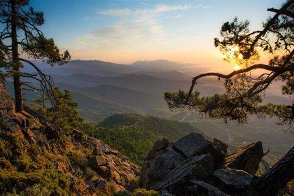 Turismo.- Estepona celebra el Día Mundial del Turismo con  acciones destinadas a promocionar su entorno
