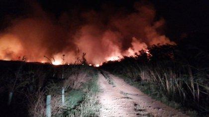 Bomberos e Ibanat actúan sobre un segundo fuego en la Albufera de Alcúdia