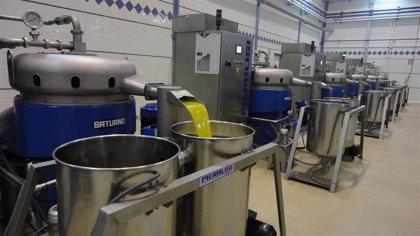 Junta concede dos millones en ayudas a industrias oleícolas y de aceituna de mesa de Málaga