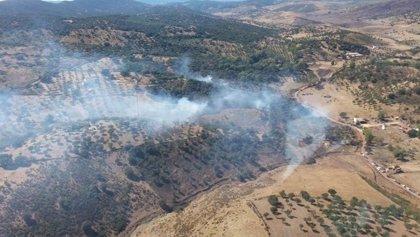Estabilizado un incendio forestal en Cumbres Mayores (Huelva)