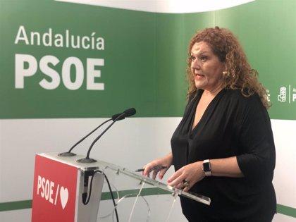 PSOE reclamará a la Junta, a través de una moción en los ayuntamientos, reforzar la sanidad pública