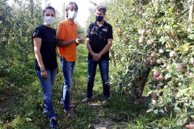 Pla obert on es poden veure els responsables de Vinagres Badia, Cal Valls i Mel i Torrons Alemany, en una finca de pomes, a Vilanova de Bellpuig, el 23 de setembre de 2020. (Horitzontal)