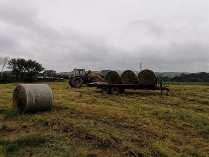 Ciudadanos propone un servicio de recogida para los residuos propios de la zona rural de Gijón