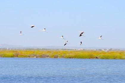 La sal marina, reclamo turístico en espacios 100% sostenibles