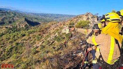 Los Bombers dan por estabilizado el incendio forestal en Vinebre (Tarragona)