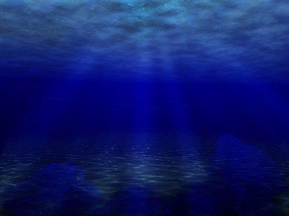 Una empresa catalana solicitará la patente europea de un coral artificial que capta datos del mar