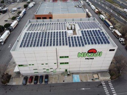 Opengy instala la primera instalación solar fotovoltaica de autoconsumo en Mercamadrid