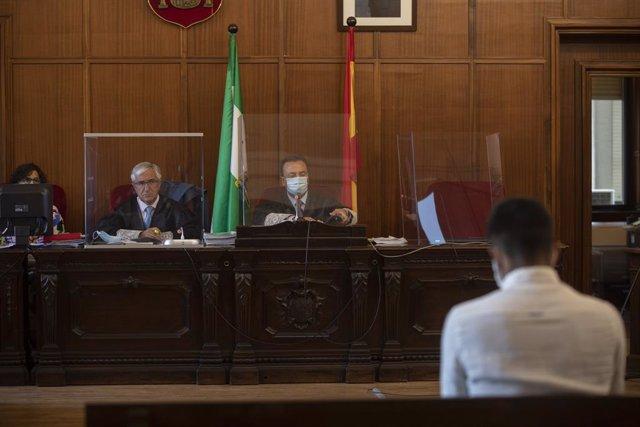 El acusado de asesinar a su madre en Alcalá de Guadaíra (Sevilla) alega que esta