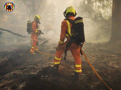 Un incendio junto a la valla de Ford Almussafes provoca una visible columna de humo, sin afectar a la fábrica