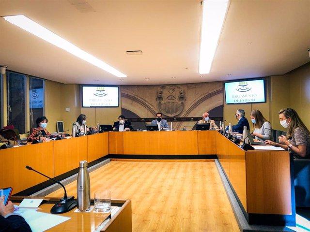 Comisión de Educación en el Parlamento con el consejero Pedro Uruñuela