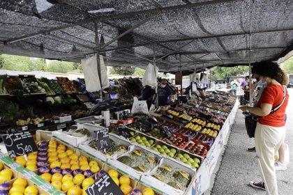 El 20% del sector hortofrutícola se encuentra en un elevado riesgo de impago por el coronavirus