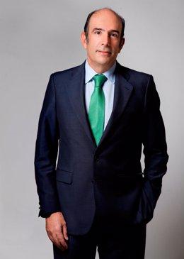 Marcelino Oreja, CEO de Enagás