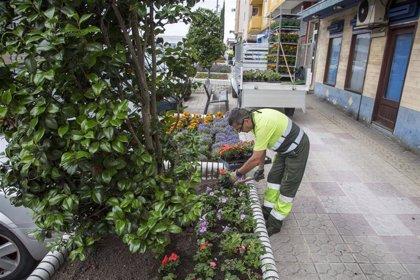Convocadas las ayudas por 325.000 euros para el sector de la flor por la COVID