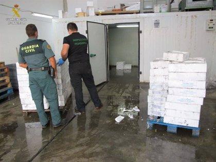 Intervienen 900 kilos de productos pesqueros en una nave clandestina en Huelva