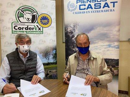 Corderex renueva su acuerdo con la agropecuaria CASAT para fomentar el consumo de la carne de ovino
