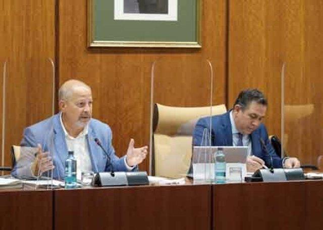 El consejero de Educación, Javier Imbroda, este miércoles durante su comparecencia parlamentaria.