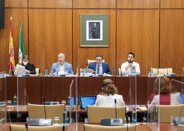 Imagen general de este miércoles de la Comisión de Educación del Parlamento de Andalucía.