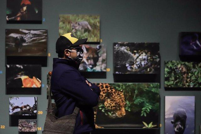 Una persona atiende a una exposición de fotografía en una de las salas del Museo Nacional de Colombia, situado en la ciudad de Bogotá.