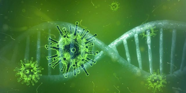 Descubren una molécula pequeña que se dirige al ARN del SARS-CoV-2 para destruir