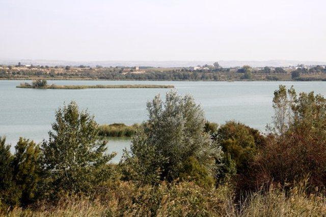Pla general on es pot veure l'estany d'Ivars i Vila-sana, l'1 d'octubre de 2020. (Horitzontal)