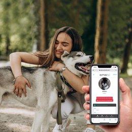 Emerid Pets, el dispositivo que ayuda a encontrar a mascotas perdidas mediante e