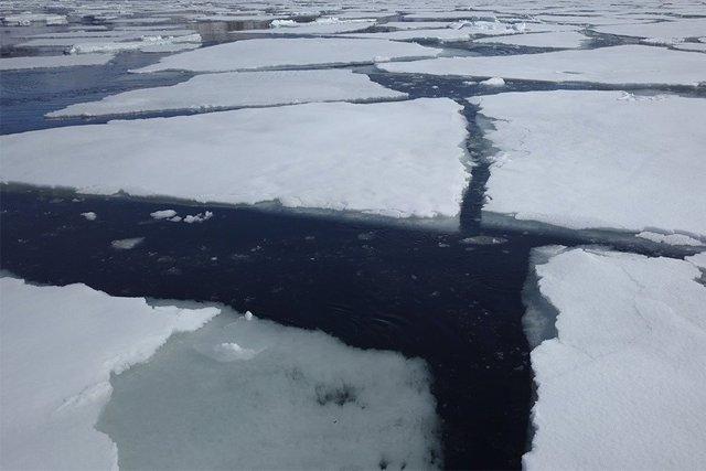 El deshielo del mar antártico puede ser neutro para el CO2 atmosférico