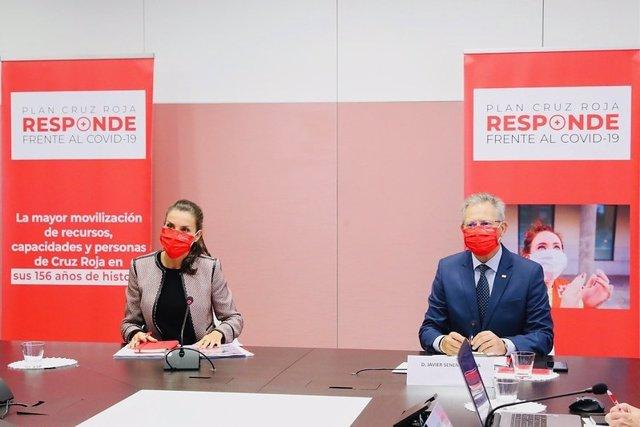 La Reina Letizia se reúne con Cruz Roja para conocer su programa de atención a p
