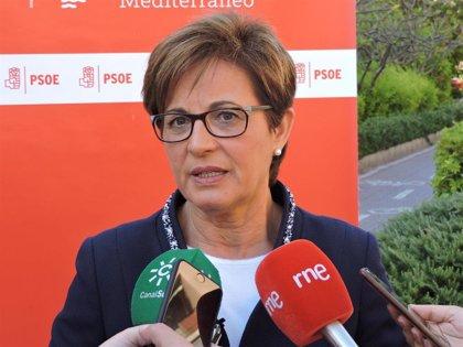 """PSOE muestra su """"satisfacción"""" a la decisión judicial de la Plaza Vieja de Almería y espera que el alcalde """"reflexione"""""""