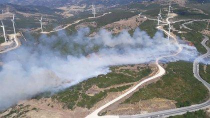 Extinguido el incendio forestal declarado en Tarifa (Cádiz)