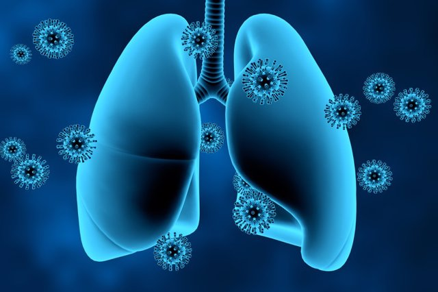 Coronavirus, COVID-19, Virus, pulmones.