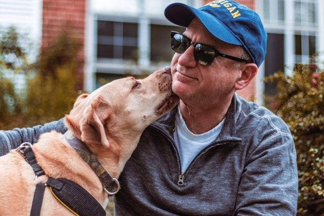A diferencia de los cerebros humanos, los de los perros no contienen áreas sensi