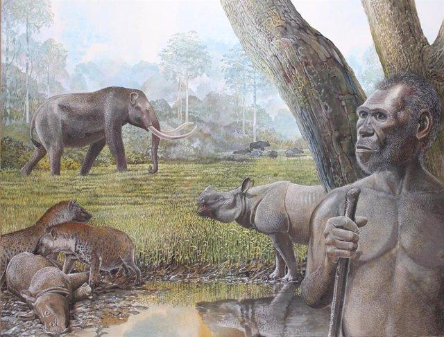 Reconstrucción artística de una sabana en el sudeste asiático del Pleistoceno medio. En primer plano, se representan Homo erectus, stegodon, hienas y rinocerontes asiáticos. El búfalo de agua se puede ver en el borde de un bosque ribereño en el fondo