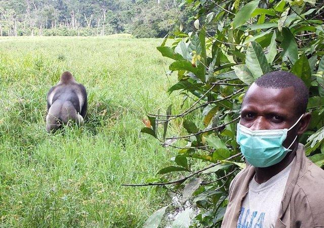 Existe un riesgo considerable de que los humanos transmitan el SARS-CoV-2, el virus que causa el COVID-19, a la vida silvestre,