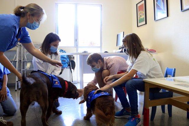 Un nen i una nena participen en una sessió d'una teràpia assistida amb gossos a Vall d'Hebron, dirigida per la psicòloga i les tècniques. 30 de setembre del 2020. (Horitzontal)
