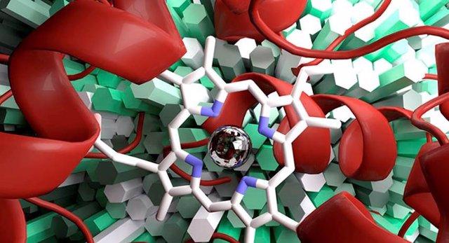 La empresa Evoenzyme, spin-off del CSIC, diseña enzimas para sectores industriales.