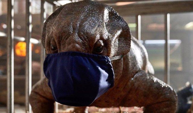 Suspendido el rodaje de Jurassic World: Dominion tras un caso de coronavirus