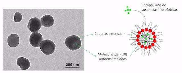 Microfotografía de los nanocristales de Pt(II)