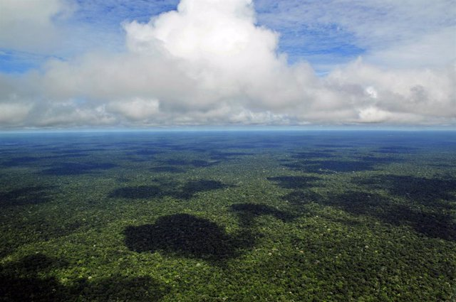Brasil.- El número de focos de incendios registrados en la Amazonía este año es
