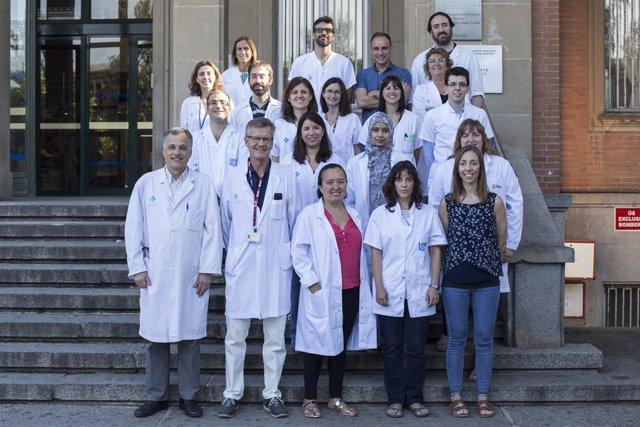 Investigadores encuentran evidencia en la relación entre la microbiota intestina