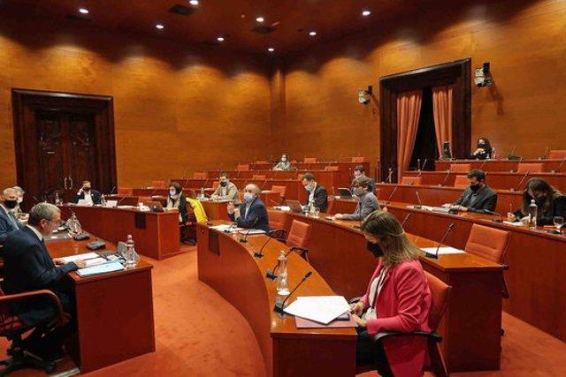 Pla general d'un moment de la Comissió d'Afers Institucionals del Parlament durant la intervenció del síndic d'Aran. Imatge del 14 d'octubre de 2020. (Horitzontal)