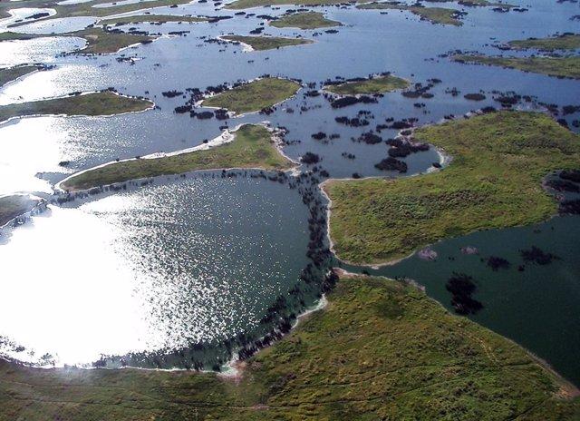Brasil.- El Pantanal brasileño registra más de 2.500 incendios en tan solo 14 dí